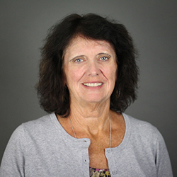 Photo of Heidi Schmidt, Faculty